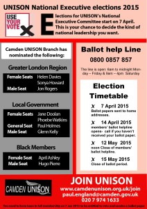 TH Newsflash NEC elections 2015 a5 f